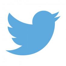 Include Tweets in Press Releases